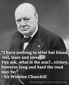 Churchill_BloodToilTearsSweat Short