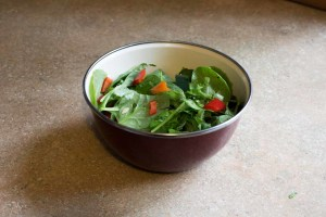Half-Pound Salad Biger Bowl