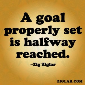 Zig-A Goal Properly Set